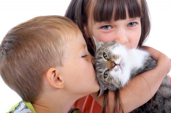 Дети обнимаются с кошкой