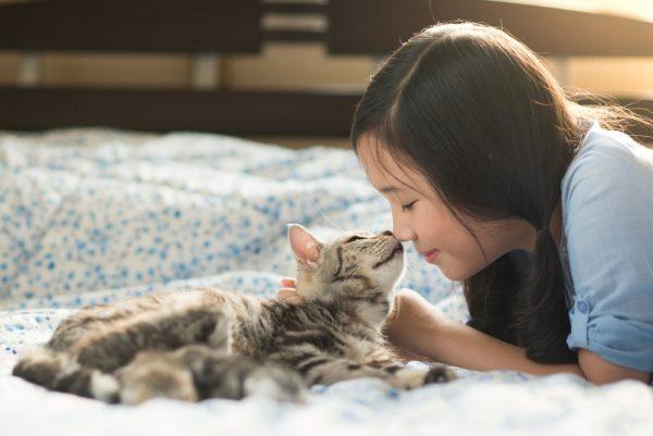 Девочка обнимает кошку