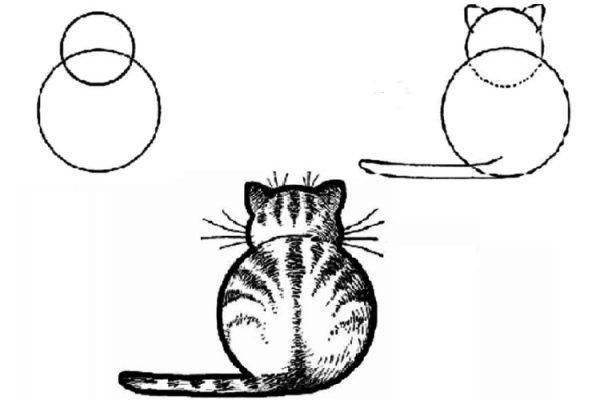 Поэтапное изображение кота из кругов