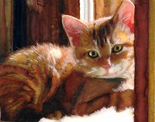 Рисунок кошки акварелью