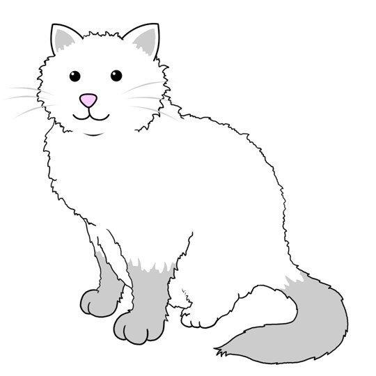 Кот с повёрнутой головой