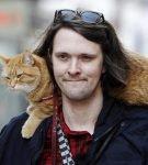 Кадр из фильма «Уличный кот по кличке Боб»
