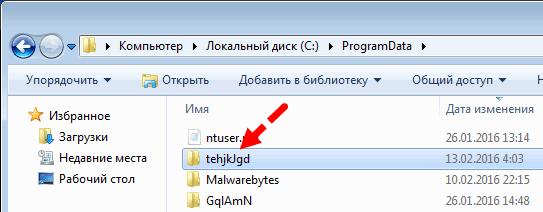 Укажите реальную папку с Yandex.Browser вместо вирусной