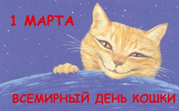Нарисованный кот на фоне звездного неба