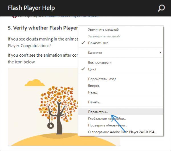 Проверка работы Adobe Flash на тестовой анимации в Google Chrome