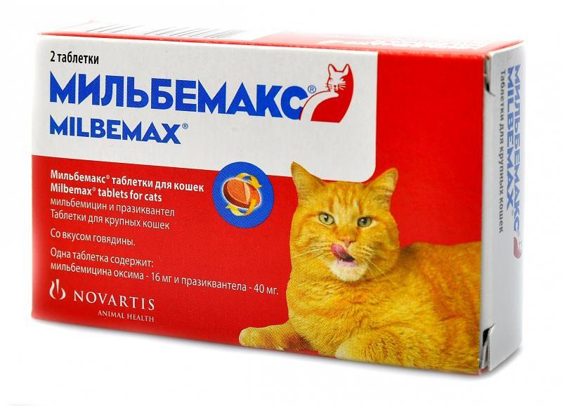 Лучшие аналоги препарата Мильбемакс для кота