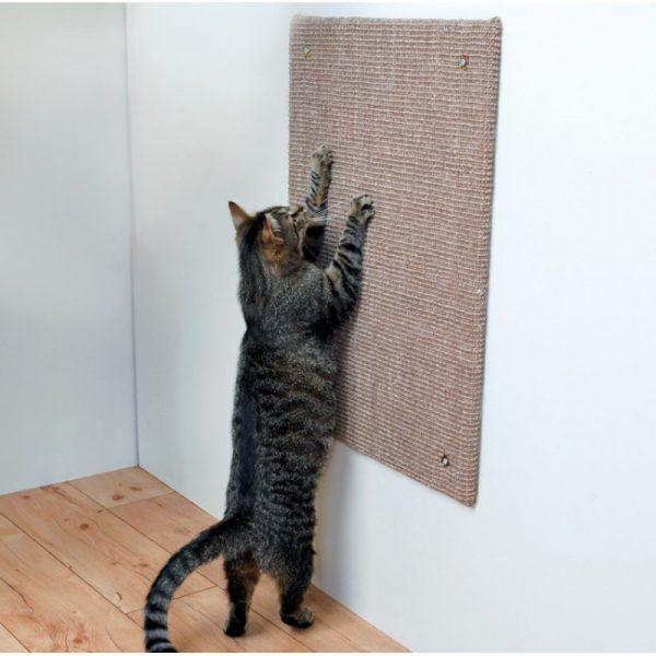 Кот точит когти о настенную когтеточку