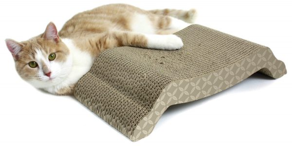 Кошка рядом с картонной когтеточкой