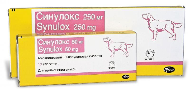 Синулокс для кошек (таблетки, суспензия): пошаговая инструкция и показания к применению