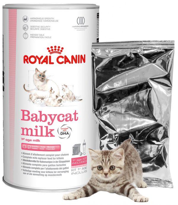 Сухая смесь для новорождённых котят
