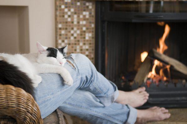 Чёрно-белый кот лежит на коленях мужчины, сидящего в кресле у камина