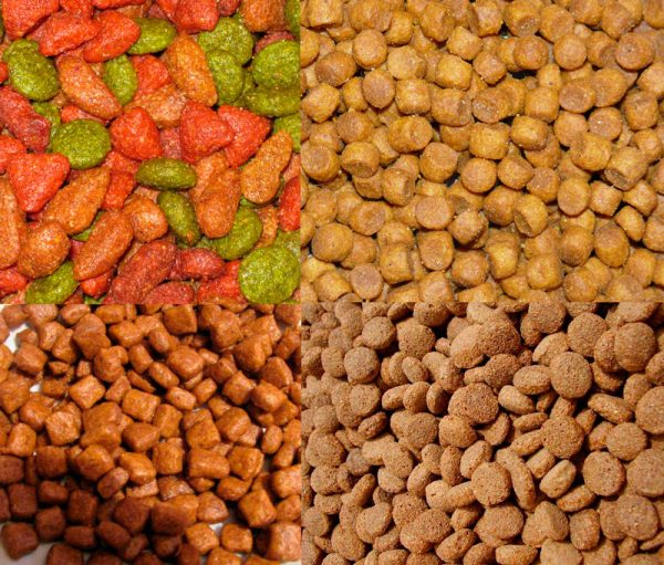 Сухой корм для кота