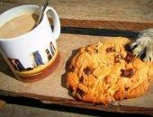 Кошачья лапка хватает печенье, лежащее рядом с бокалом кофе с молоком