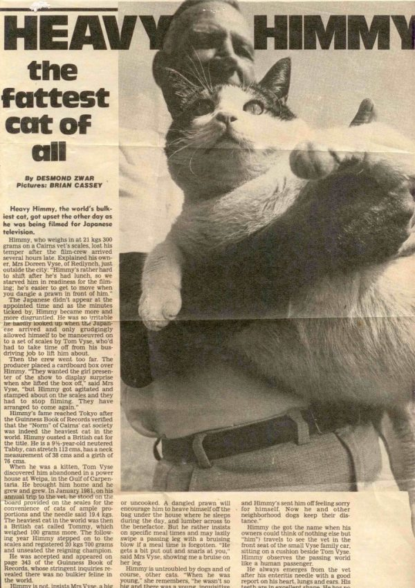 Фото кота Химми в газете