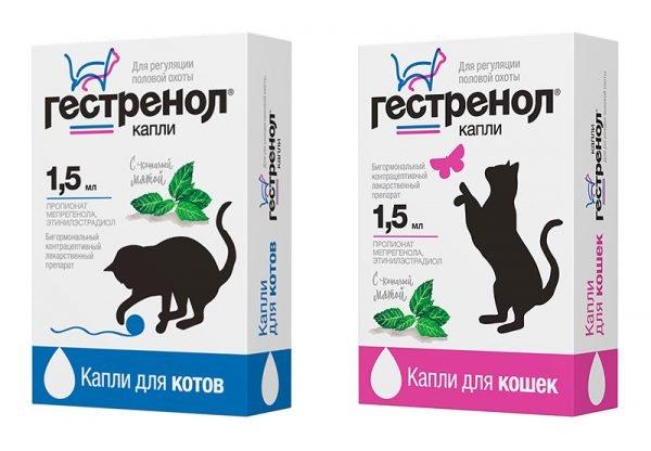 Гестренол для кошек
