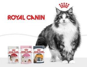 Корм Royal Canin для кошек