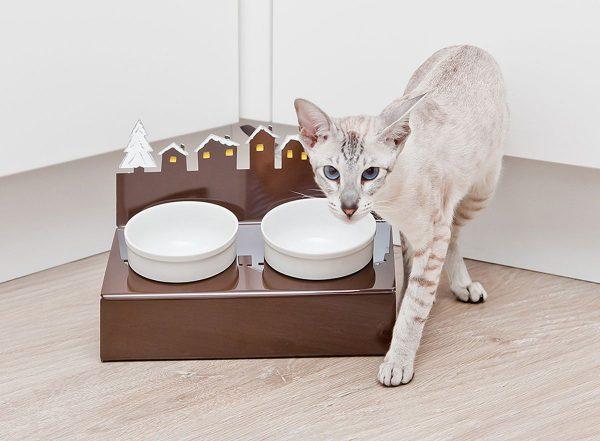 Кот рядом с керамическими мисками на подставке