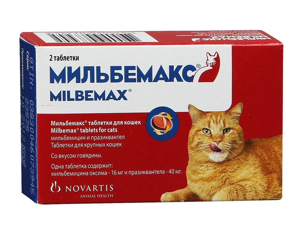 Пуревакс для кошек: инструкция по применению вакцины
