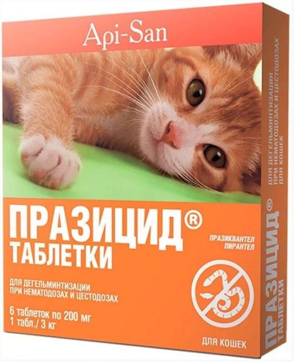 Упаковка препарата Празицид