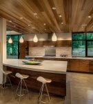 Современный стиль в интерьере кухни