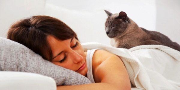 Женщина спит на белой постели с серой кошкой на спине