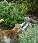 Кот и статуэтка Будды