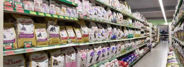 Разновидности кормов для кошек