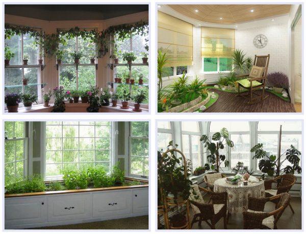 Примеры оформления зимнего сада в эркере