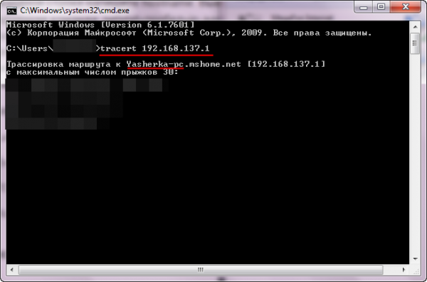 Командная строка, выполнение «tracert» с указанием IP-адреса