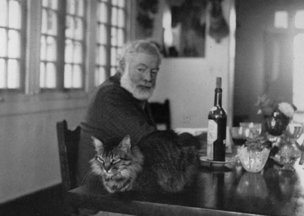 Эрнест Хемингуэей с котом