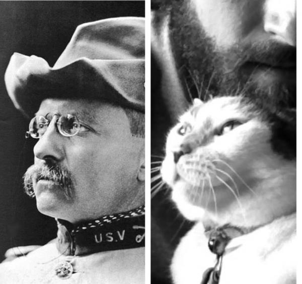 Теодор Рузвельт с котом