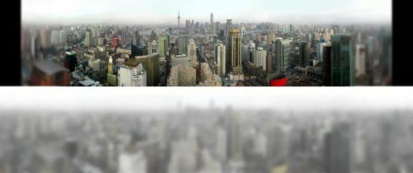 Город за окном глазами человека и кошки