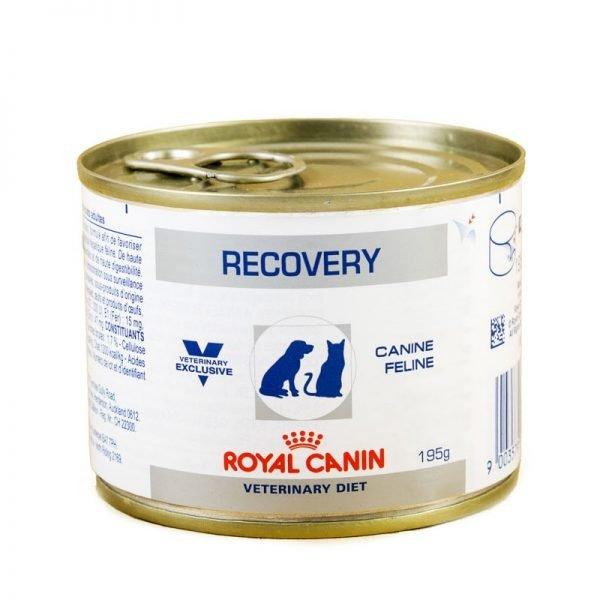 Влажный корм Royal Canin для животных в период реабилитации