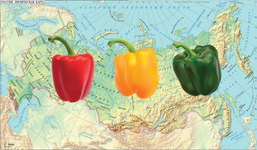 Сроки по регионам