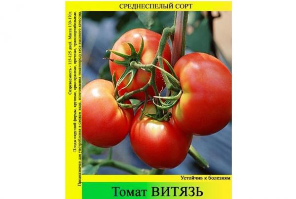 Сорт томатов Витязь