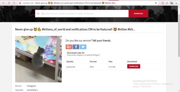 Страница с видео на сервисе