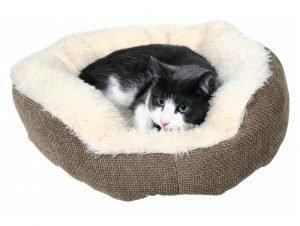 Котик в лежанке