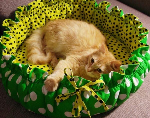 Рыжий кот в круглой лежанке