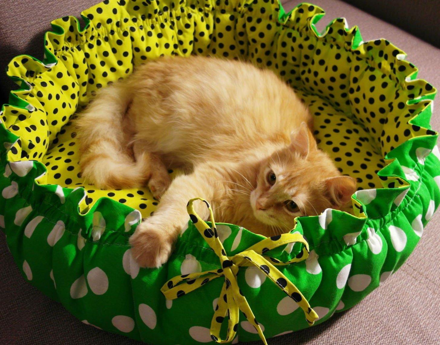 Лежак для кошки своими руками фото