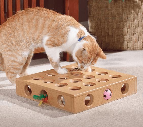 Интерактивная игрушка для котёнка