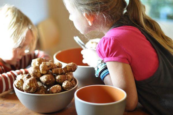 Дети готовят еду из топинамбура