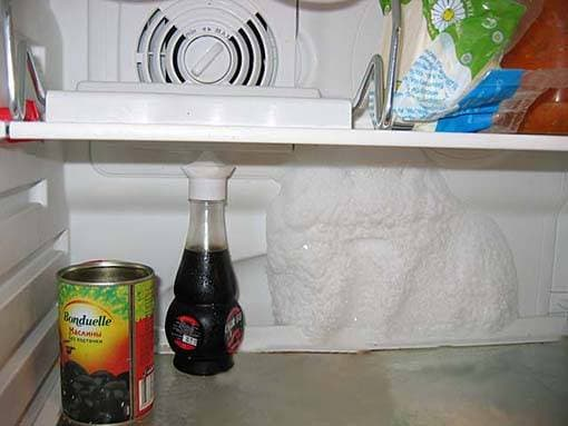 Шуба в холодильнике