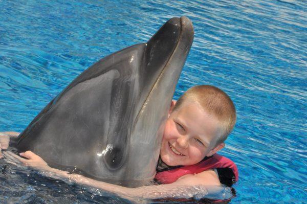 Мальчик обнимает дельфина