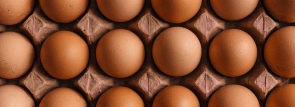 Яйца в лотке