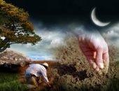 Мир земной и небесный настолько взаимосвязаны, что нельзя отрицать роль Луны на развитие растений