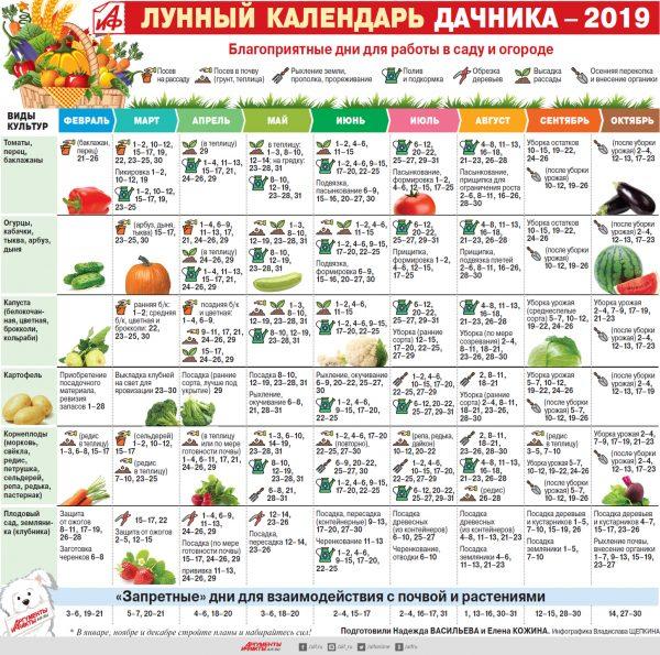 Лунный календарь дачника 2019