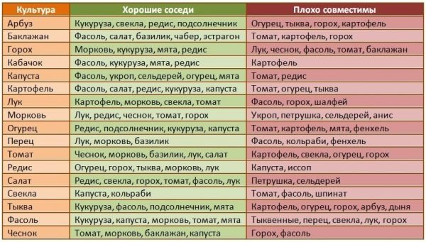 Таблица соседей