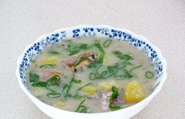 Рыбный суп с пшеном, картофелем и рубленым зелёным луком в тарелке
