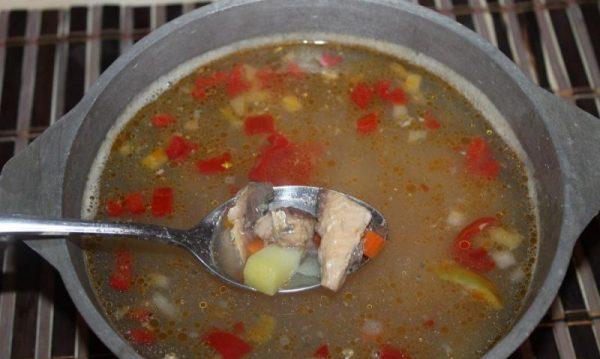 Кастрюля с супом и кусочек рыбы в металлической ложке