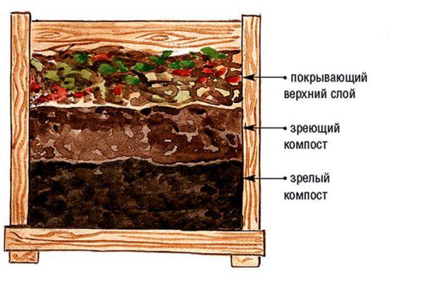 Процесс разложения сырья для компоста
